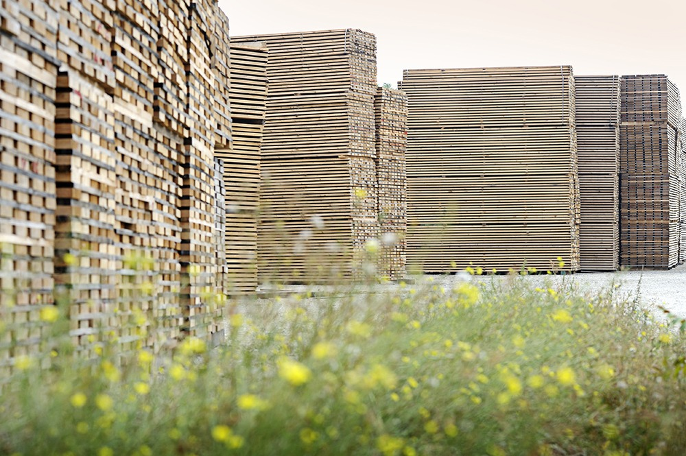 Holzhandel Baumgartner - Nachhaltige Forstwirtschaft
